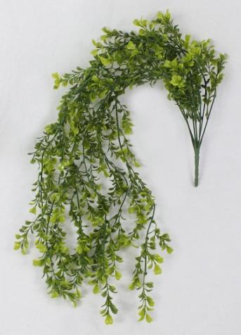 Зелень ампельная эвкалипт
