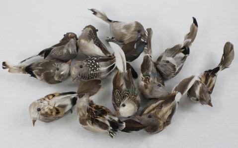 Птица W1616012шт