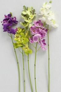 Орхидея мини LA001