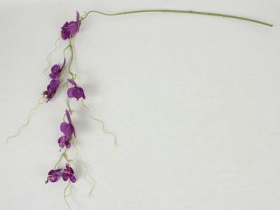 Орхидея гирлянда SUN423