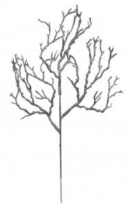 Ветка коралл н.г.3411