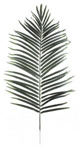 Лист феникса 100см