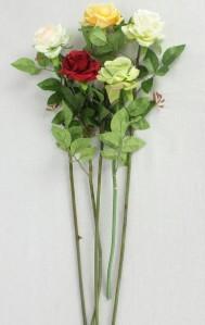 Роза мини ZAH12ZYH029