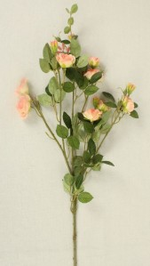 Роза спрей SUN103