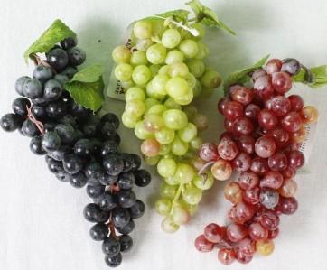 Виноград 123CAN108