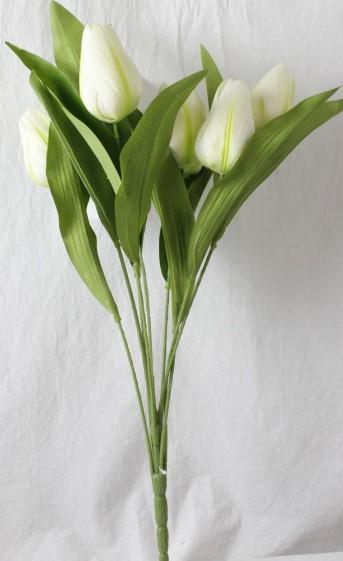 Букет тюльпана 9гол*6шт