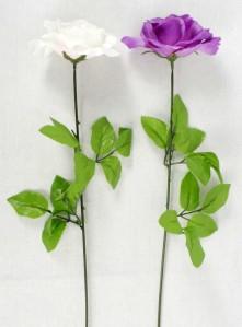Роза открытая на ноге